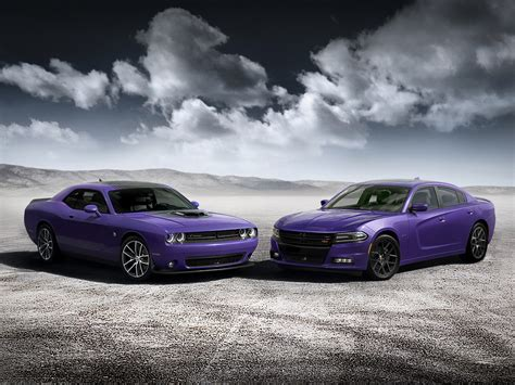 dodge bringing back plum releasing high impact colors production figures