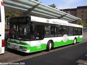 Was Ist Ein Bus : auf diesem foto ist ein bus von man zu sehen der bus f hrt als linie ms1 nach st avold in ~ Frokenaadalensverden.com Haus und Dekorationen