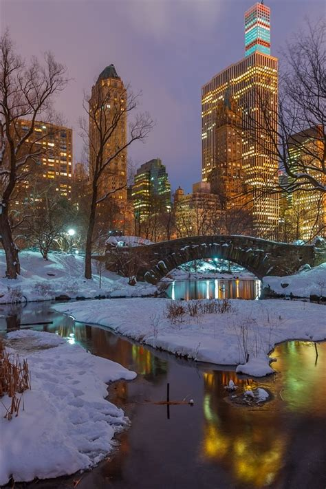Central Park Winter Iphone Wallpaper wallpaper new york central park snow trees river