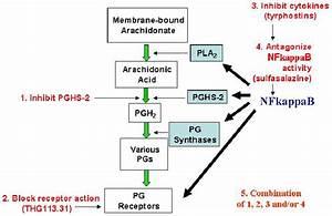 Combined Prostaglandin