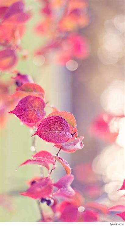 Girly Wallpapers Colorful Backgrounds Hipwallpaper