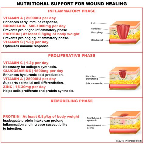 nutritional support  injury  wound healing