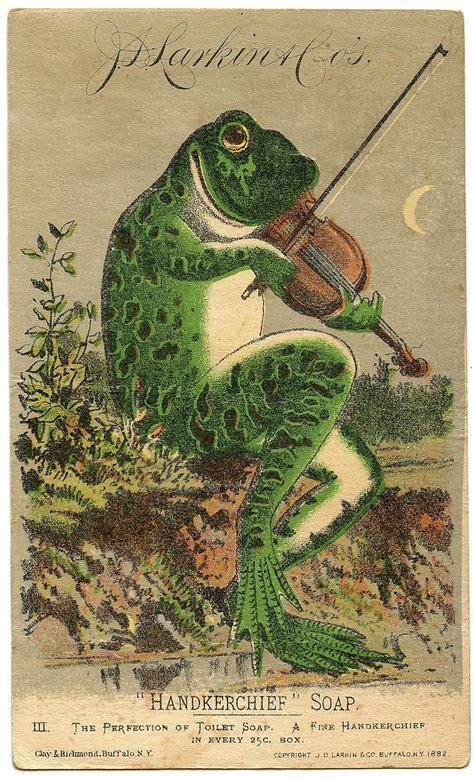 vintage image fabulous frog  violin  graphics fairy