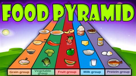 Nutrition Food Pyramid Healthy Eating Educational