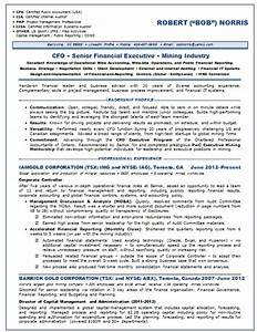 resume samples chief financial officer cfo mining With cfo resume examples