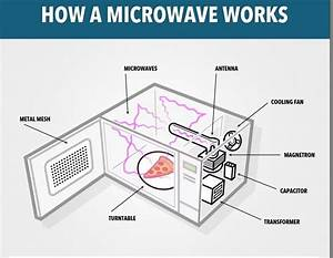 What Happens When You Put A Metallic Object In A Microwave   U00bb Science Abc