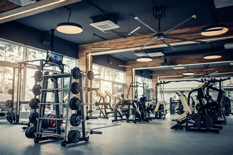 judge denies tro  gym owners news  daily news