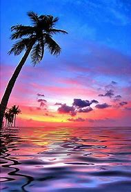 Hawaiian Beach Sunset Scenes
