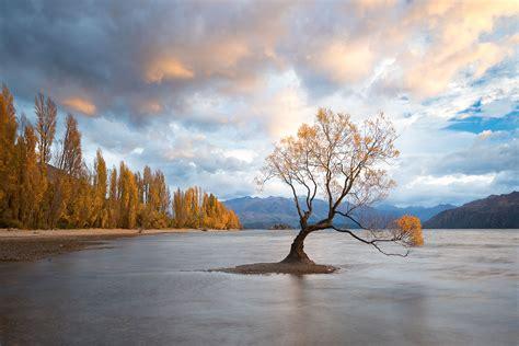 New Zealand — Steven Davis Photography
