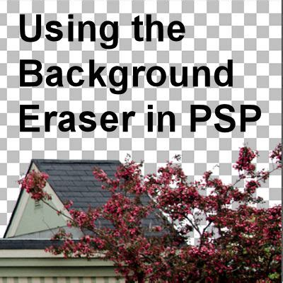 background eraser  paintshop pro scrapbook