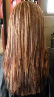 Straight Layered Hair Back View