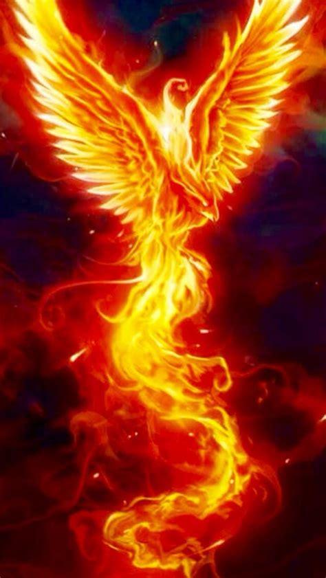 les  meilleures images du tableau idee tatouage phoenix