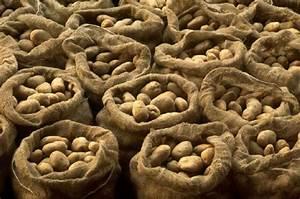 Kartoffeln Lagern Ohne Keller : pfel lagern plastikt ten g nstige k che mit e ger ten ~ Frokenaadalensverden.com Haus und Dekorationen