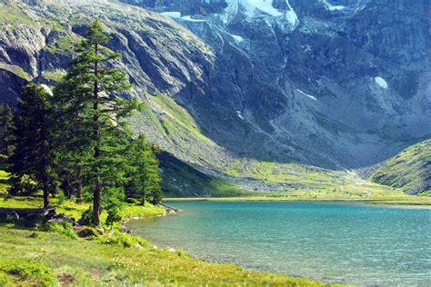 In Der Natur by Natur Bilder 217 Pexels Wallpaper