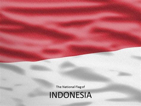 flag  indonesia template