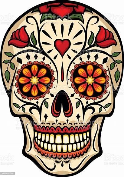 Skull Sugar Vector Skulls Dead Illustration Mexico