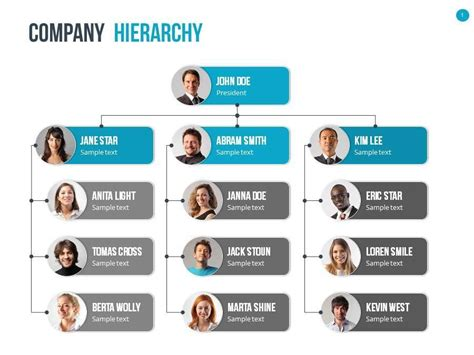 organizational chart  hierarchy template graphicriver