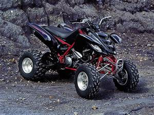 Quad Yamaha Raptor : 2005 yamaha raptor 660 atv pictures review and specs ~ Jslefanu.com Haus und Dekorationen
