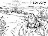 Coloring Pages February Groundhog sketch template