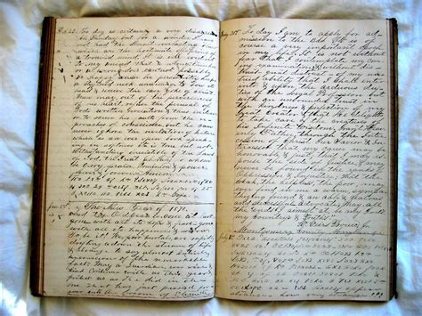 The Diary diary this is the last entry from william viers bouic s