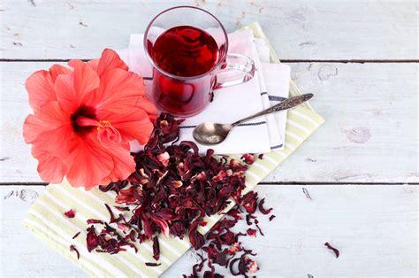 les fleurs comestibles en cuisine les meilleures fleurs comestibles pour cuisiner