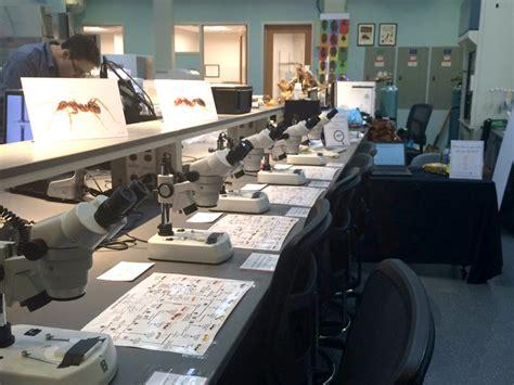 evolutionary biology behavior research lab