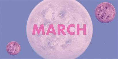March Horoscope Tarot Reading Sign Star Month