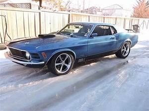 Manual Mustang For Sale Alberta