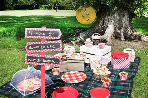 pic nic ideas teddy bear picnic party ideas party delights blog
