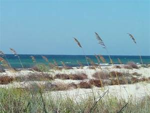 Gulf Shores State Park - Bing images