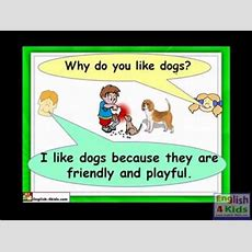 English For Kids,esl Kids Lessons  Pets , Dogs, Cat, Hamster, Parrotflv Youtube