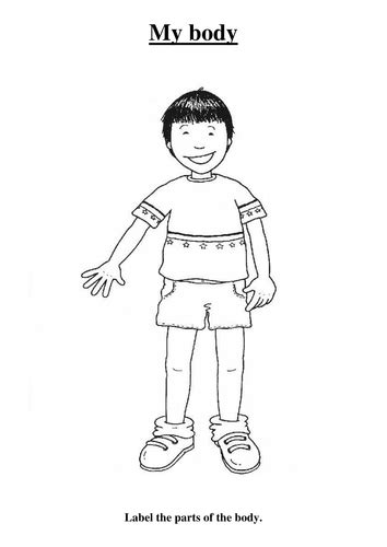 body  sarah morgan teaching resources tes
