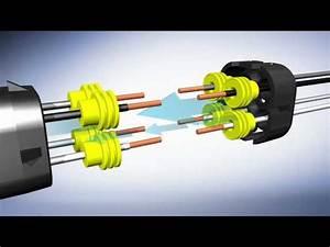 5 Wire O2 Sensor Color Code