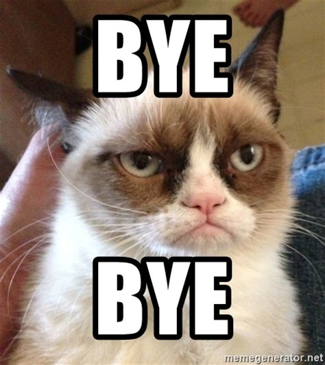 Goodbye Cat Meme - goodbye cat meme 28 images goodbye cat meme image mag meme monday goodbye weekend imod