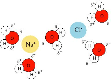 inorganic chemistry ions na and cl chemistry stack exchange
