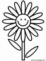 Coloring Flower Daisy Pages Printable Print sketch template
