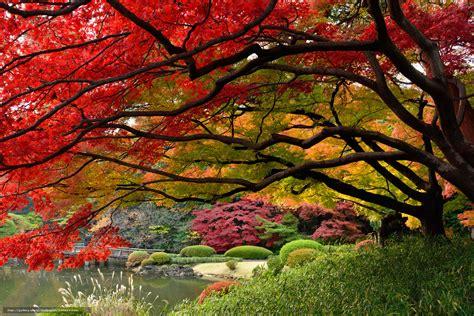 Japanischer Garten In Tokio by Hintergrund Japan Tokyo Japanischer Garten