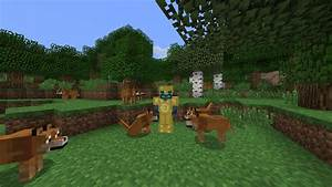 Wow So Doge Mod Minecraftfr
