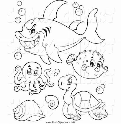 Coloring Sea Pages Clipart Shark Colour Royalty