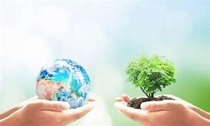 Was Können Sie Tun Um Die Umwelt Zu Schonen : 5 einfache tipps um die umwelt zu schonen ~ Watch28wear.com Haus und Dekorationen