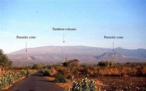 Tambora Volcano With Shield