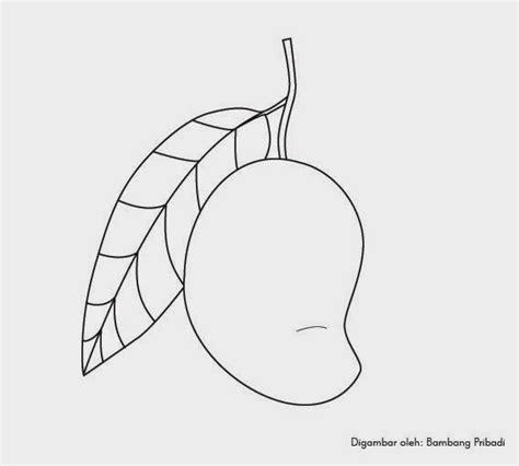 belajar mewarnai gambar buah mangga belajar menggambar