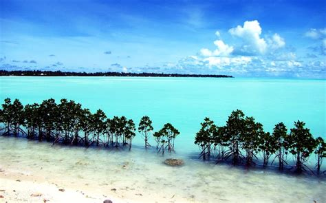 Kiribati travel guide, info, food, drink, shopping ...