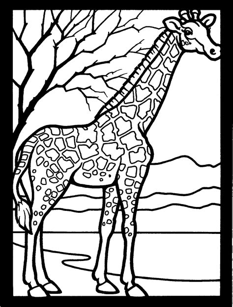 printable giraffe coloring pages  kids