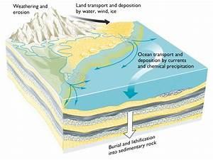 11   Formation Of Sedimentary Rocks