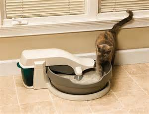 self cleaning cat litter box self cleaning litter boxes continuous clean litter box