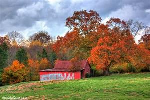 North Georgia Fall Colors!  Fall