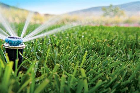 los beneficios del riego automatico en el jardin verde