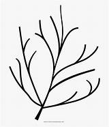 Twigs Twig Coloring Icon Clipart Clipartkey sketch template