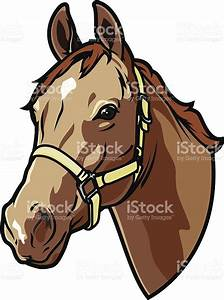 Horse Head Cartoon - ClipArt Best